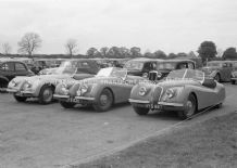 Jaguar XK120s in Silverstone Car Park 1952.  photo